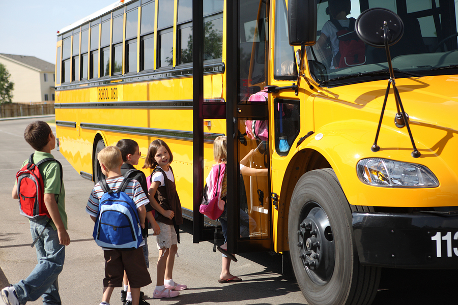 School Bus and Pedestrian Safety